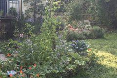 Garten Frau Fadegrad